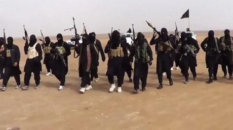 گاردین: با سقوط داعش، خارجیهای عضو این گروهک سوریه را ترک میکنند