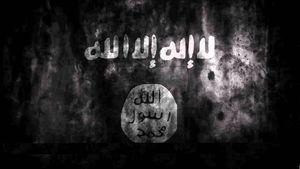 انتحاری داعش علیه ارتش مصر در سینا+تصاویر
