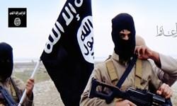انتقال عناصر داعش به غرب و شمال ادلب سوریه با هماهنگی با «النصره»