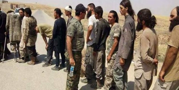 آمریکا و بازسازی داعش در کردستان عراق برای استفاده علیه بغداد و تهران