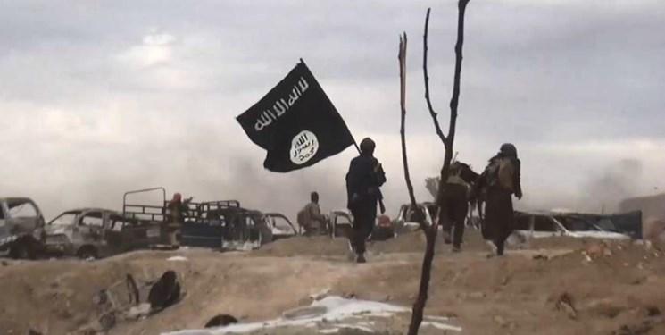 چشم طمع داعش به «مالی، نیجر و بورکینافاسو» در آفریقا