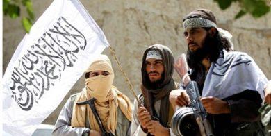 رویترز: طالبان افغانستان لشکر سایبری تشکیل داد