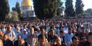 نماز عید قربان در قدس؛ حضور هزاران نمازگزار، حمله صهیونیستها و واکنش حماس