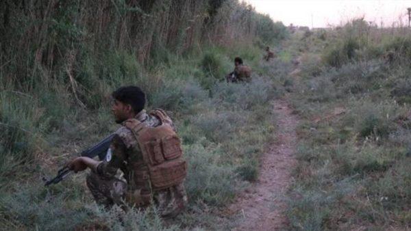 آخرین تحولات میدانی استان دیاله / فرصتطلبی داعش از ناآرامیهای عراق + نقشه میدانی و عکس